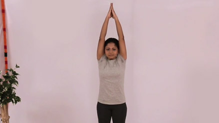 Fitness Yoga Program 1